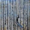 Bjrkeskogen 2